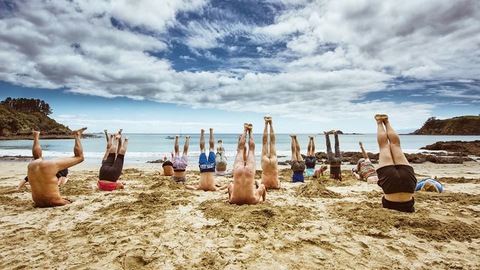On Waiheke Island, they left nothing to the imagination about their position. Photo: Peter Rees